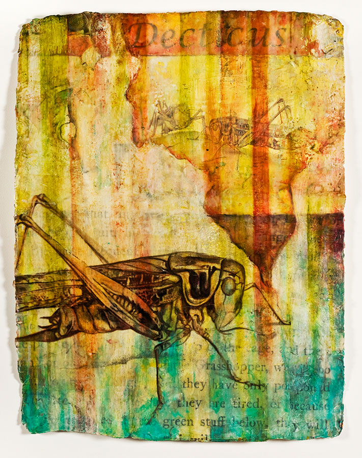 "Decticus, mixed media on Indian paper, 47 x 34"", $4500"